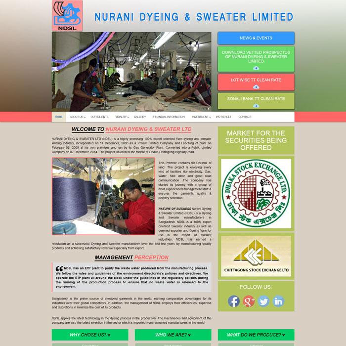 NDSL | Top Domain Hosting Company in Bangladesh, Web hosting company