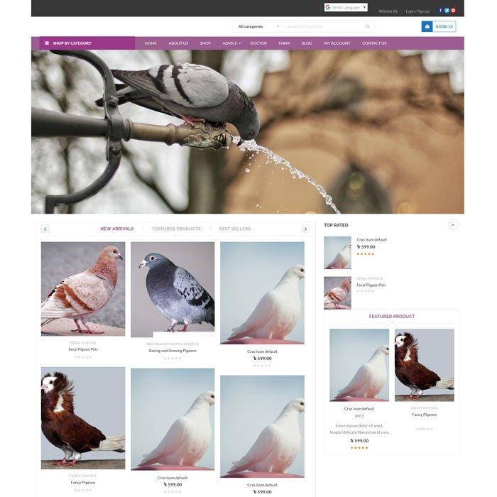 Pigeons Ale Online
